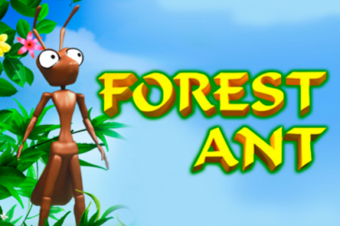Forest Ant Slot game – How to play and Where to play?