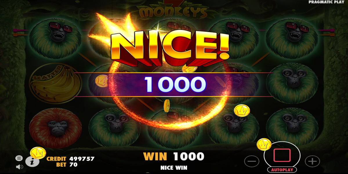 Try the Monkey Money Slots Here with No Download