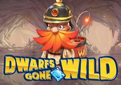 Go Wild Casino For Mac